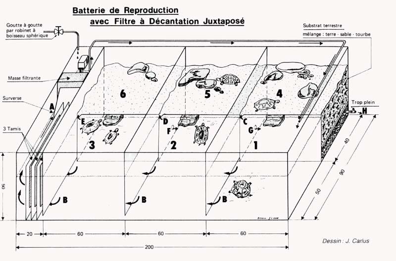 Filtre à décantation pour terrarium à tortues Batterie_repro